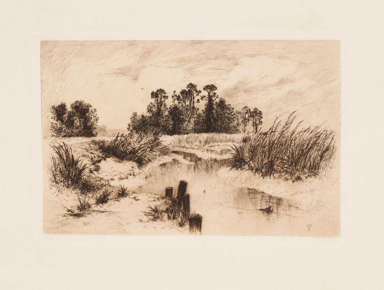 The Passaic Meadows