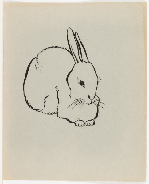 Three Quarter View of Rabbit
