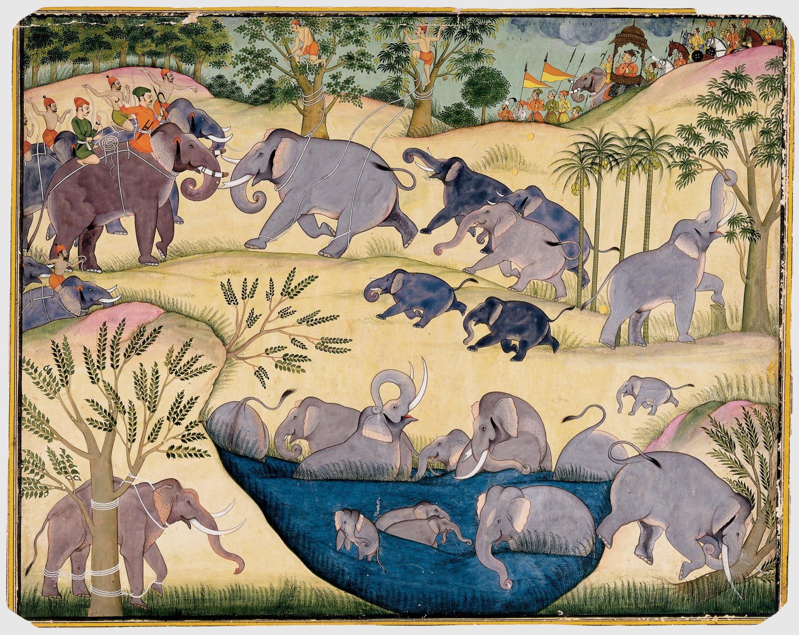 The Elephant Hunt of Maharaja Anup Singh of Bikaner