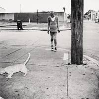 Untitled [standing woman and utility pole, cat exiting frame]