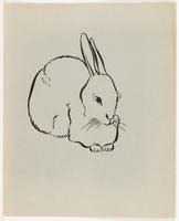 Three Quarter View of Rabbit
