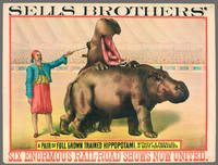 Sells Brothers': A Pair of Full Grown Hippopotami